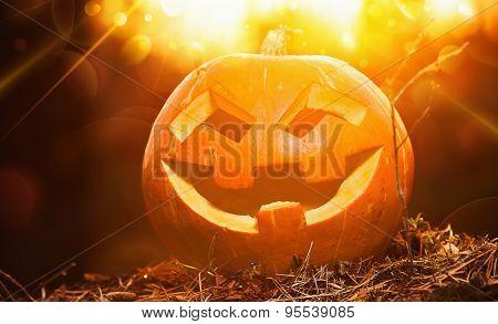 Jack O Lantern halloween pumpkin at sunset