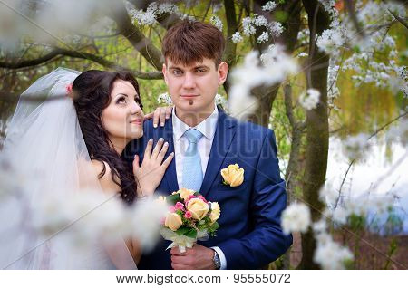 Wedding Groom And Fiancee Of Embrace On Nature
