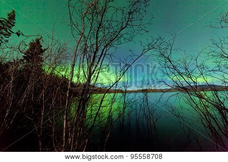 Northern Lights Shore Willows Lake Surface Mirror
