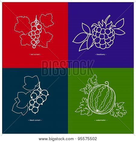 Blackcurrant,watermelon,redcurrant,blackberry