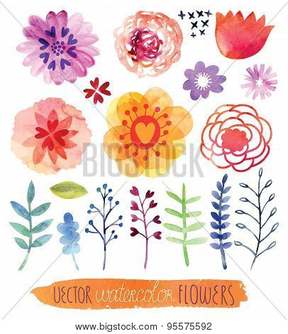 Set Watercolor Flowers