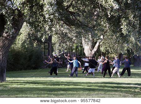 Tai Chi In A Park In Avignon