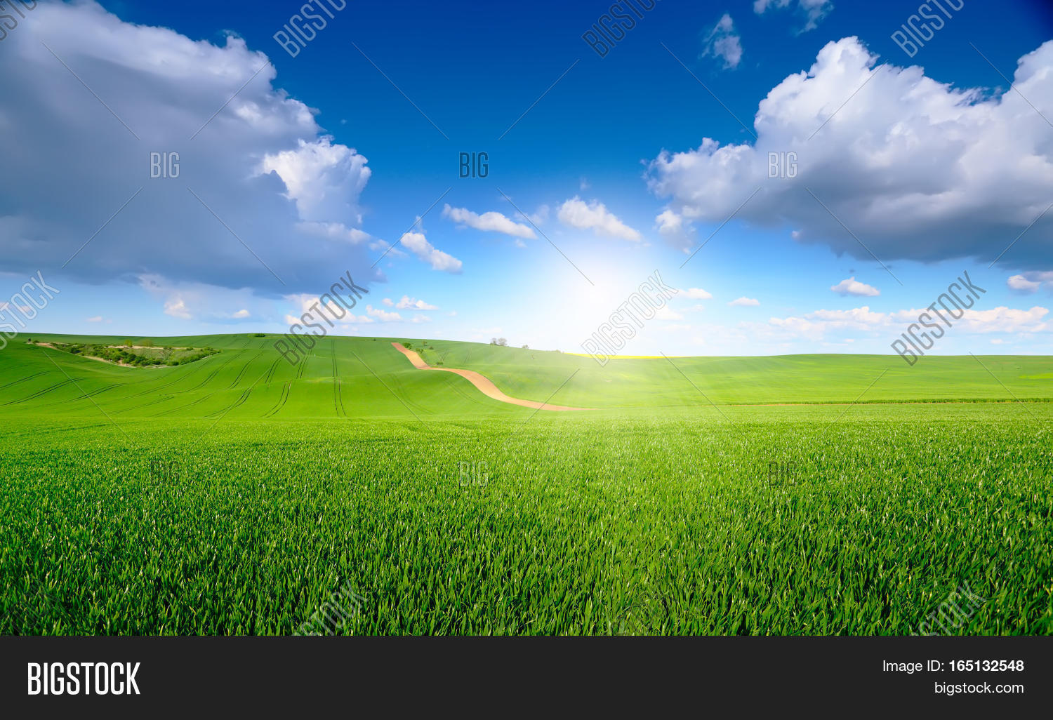 blue sky above green image & photo (free trial) | bigstock