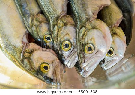 Pile of bluefish in a glass bowl before cooking