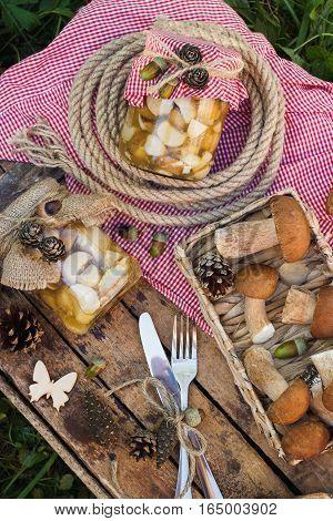Raw White Mushrooms, Pine Cones And Decorations