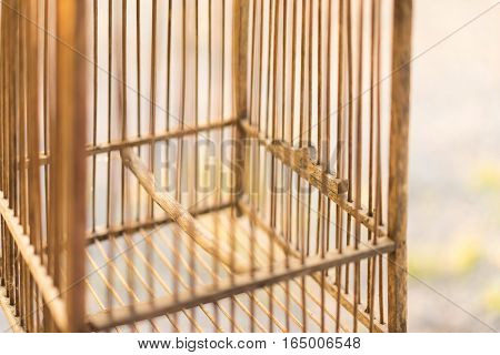 closed up emty wood bird cage in sunset light freedon concept.