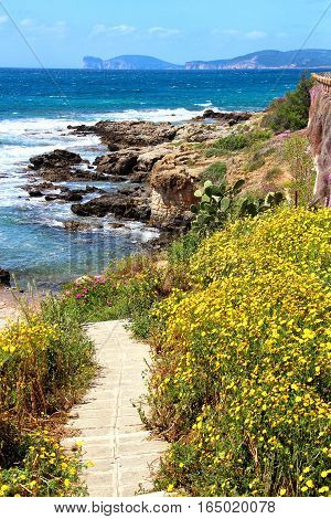 Alghero sea coast on Sardinia island, Italy