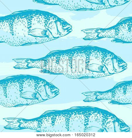 Vector illustration with sketches of carp fish. Hand-drawn seamless background blue color.