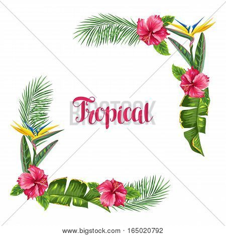 Frame with tropical leaves and flowers. Palms branches, bird of paradise flower, hibiscus.