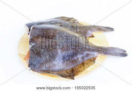 Fresh fish raw flounder on white background
