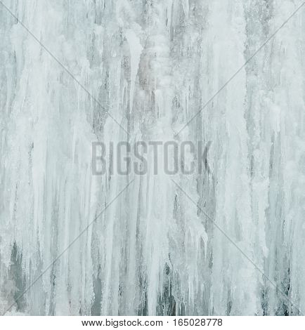 Winter nature background. Wall of big icicles