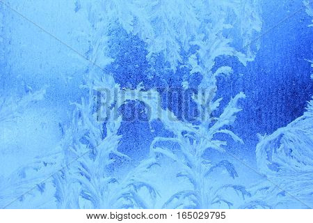 Blue background:frost patterns on a window pane