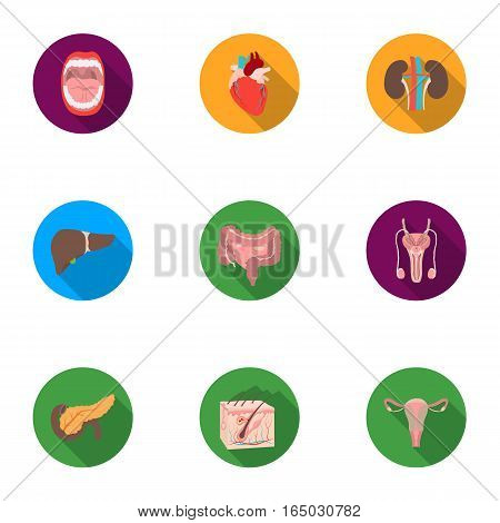 Organs set icons in flat style. Big collection of organs vector symbol stock