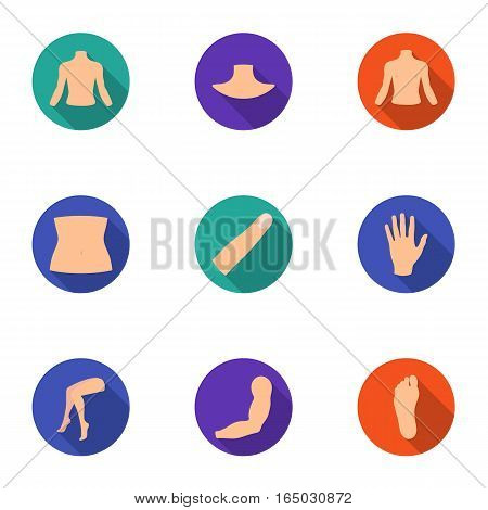 Part of body set icons in flat style. Big collection of part of body vector symbol stock