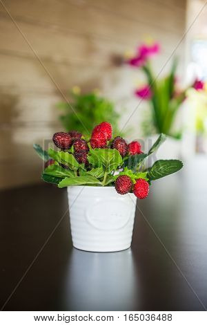 Berries Used To Decorate