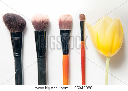 Beauty Background With Make Up Brushes And Flower