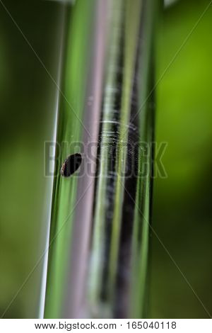 Shiny metal tube on a green background as a ecology concept