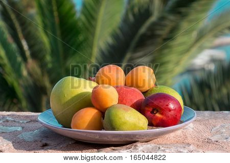 Plate of fruit apple, pear, peach, nectarine, apricot, lemon on the background of palm tree branches. Summer fruit plate. Horizontal. Daylight. Close up.