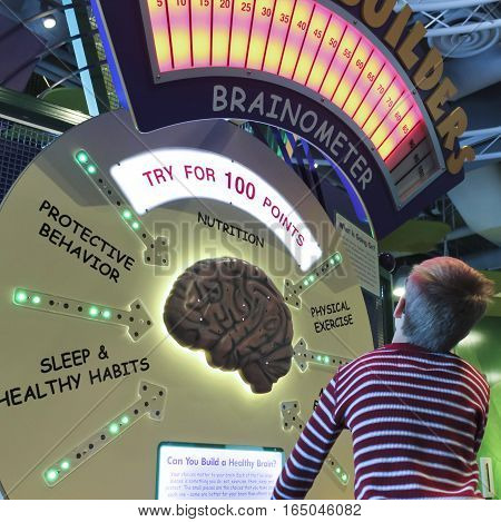 LAS VEGAS, NEVADA, DECEMBER 29. The Discovery Children's Museum on December 29, 2016, in Las Vegas, Nevada. A Boy Learns About Brains at the Discovery Children's Museum in Las Vegas, Nevada.
