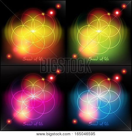 Seed of life. Sacred geometry. Colorful with realistic light and shadow on the dark background. Vector illustration. Eps10.