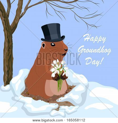 Vector illustration with a cute groundhog in a black hat holding a bouquet of flowers out of a hole. Happy Groundhog day lettering greeting card.