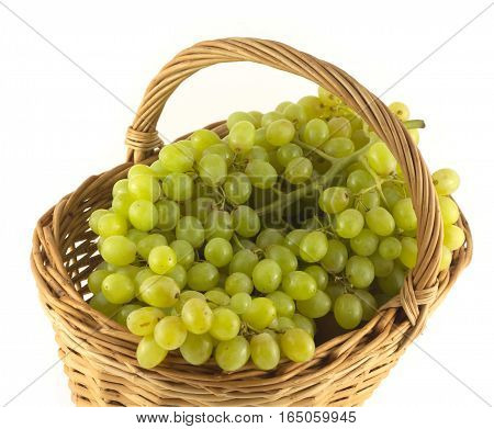 Lot of ripe grape bunches with green berries in brown wicker basket isolated on white close up