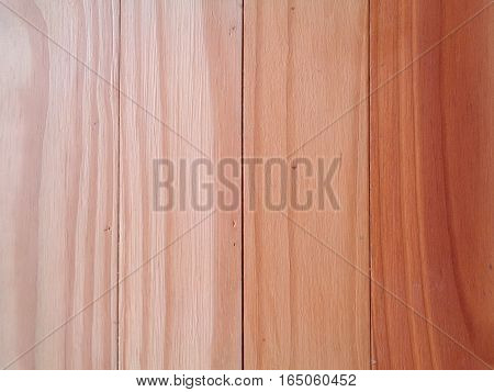 Color Gradation of the Wooden Wall, Close-up, Pattern,Texture