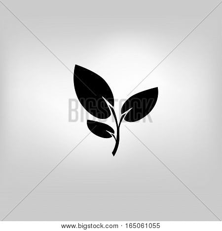 Plant in flower pot icon on gray background with round shadow. Vector illustration.