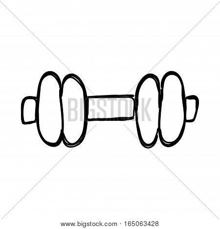 Isolated gym weight icon vector illustration graphic design