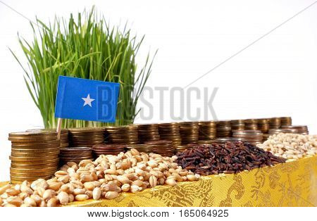 Somalia Flag Waving With Stack Of Money Coins And Piles Of Wheat And Rice Seeds