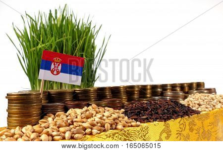 Serbia Flag Waving With Stack Of Money Coins And Piles Of Wheat And Rice Seeds