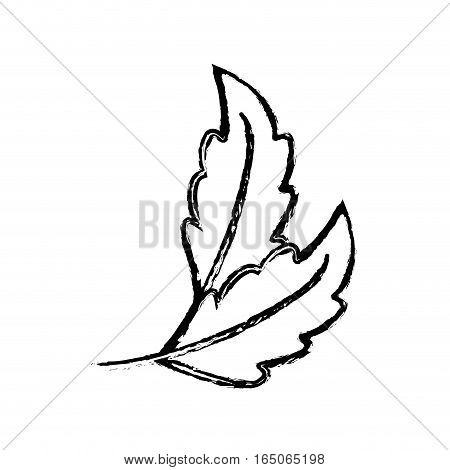 Natural leaves ecology icon vector illustration graphic design