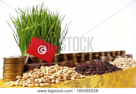 Tunisia Flag Waving With Stack Of Money Coins And Piles Of Wheat And Rice Seeds