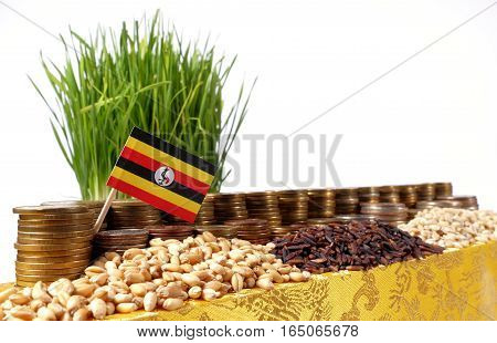 Uganda Flag Waving With Stack Of Money Coins And Piles Of Wheat And Rice Seeds