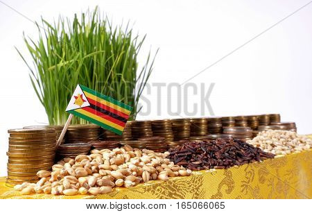 Zimbabwe Flag Waving With Stack Of Money Coins And Piles Of Wheat And Rice Seeds