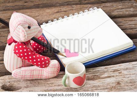 Bear Write The Book