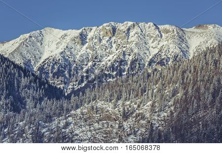 Snowy Piatra Craiului National Park