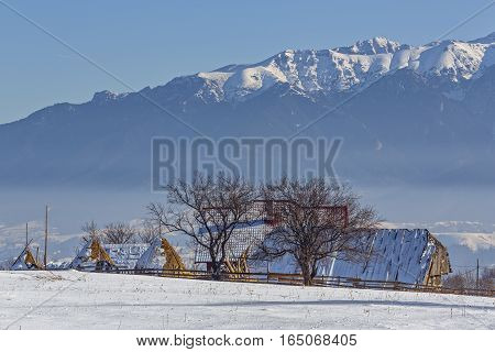 Rural Winter Scenery