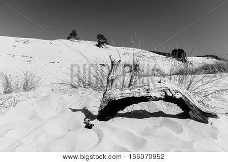 The Beach Of Le Dune, Porto Pino, Sardinia, Italy.