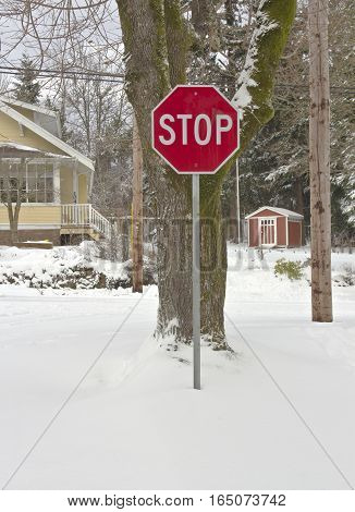Stop sign and a whiteout landscape in Gresham Oregon.