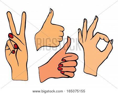 Vector set of hands. Icons of different characters. Pointing finger. Clapping, applause, Good and ok.