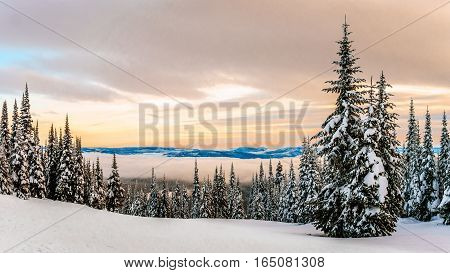 Sunset over the Winter Landscape with Snow Covered Trees on the Ski Hills near the village of Sun Peaks in the Shuswap Highlands of central British Columbia, Canada