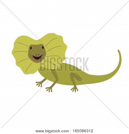 the frilled lizard isolated on white background