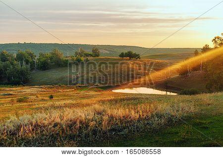 Летнее утро на природе. Саратовская область, Татищевский район