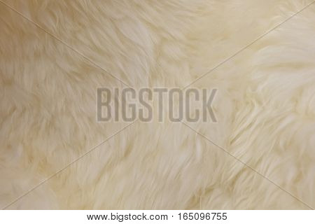 Fabric Textile Close Up of White Plush Blanket Wool Texture Pattern Background.