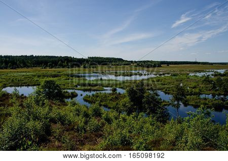 Bølling, Bolling, lake, Engesvang, Denmark, with blue sky and green plants