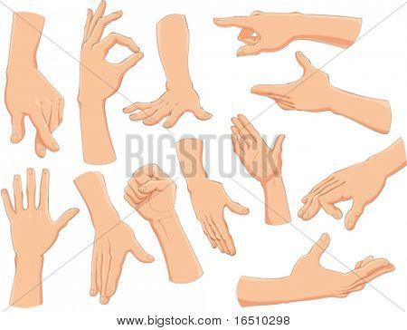 손입니다.