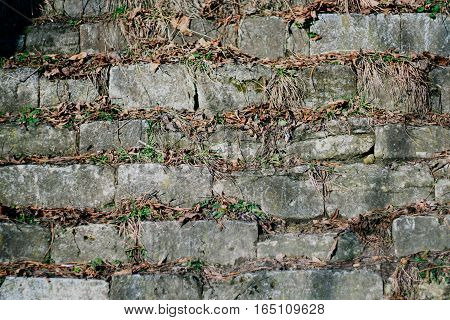 Masonry with dry grass background pattern wall