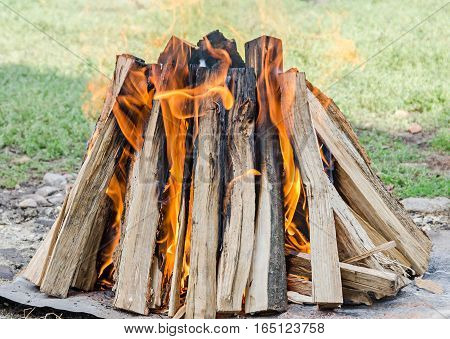 Wood Logs In Fire, Outdoor Fire For Barbecue, Colored Flames, Close Up