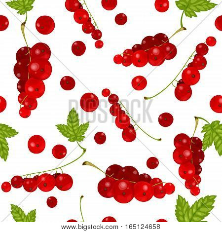 Vector illustration of red currants. Seamless pattern. Red currant collection on white background